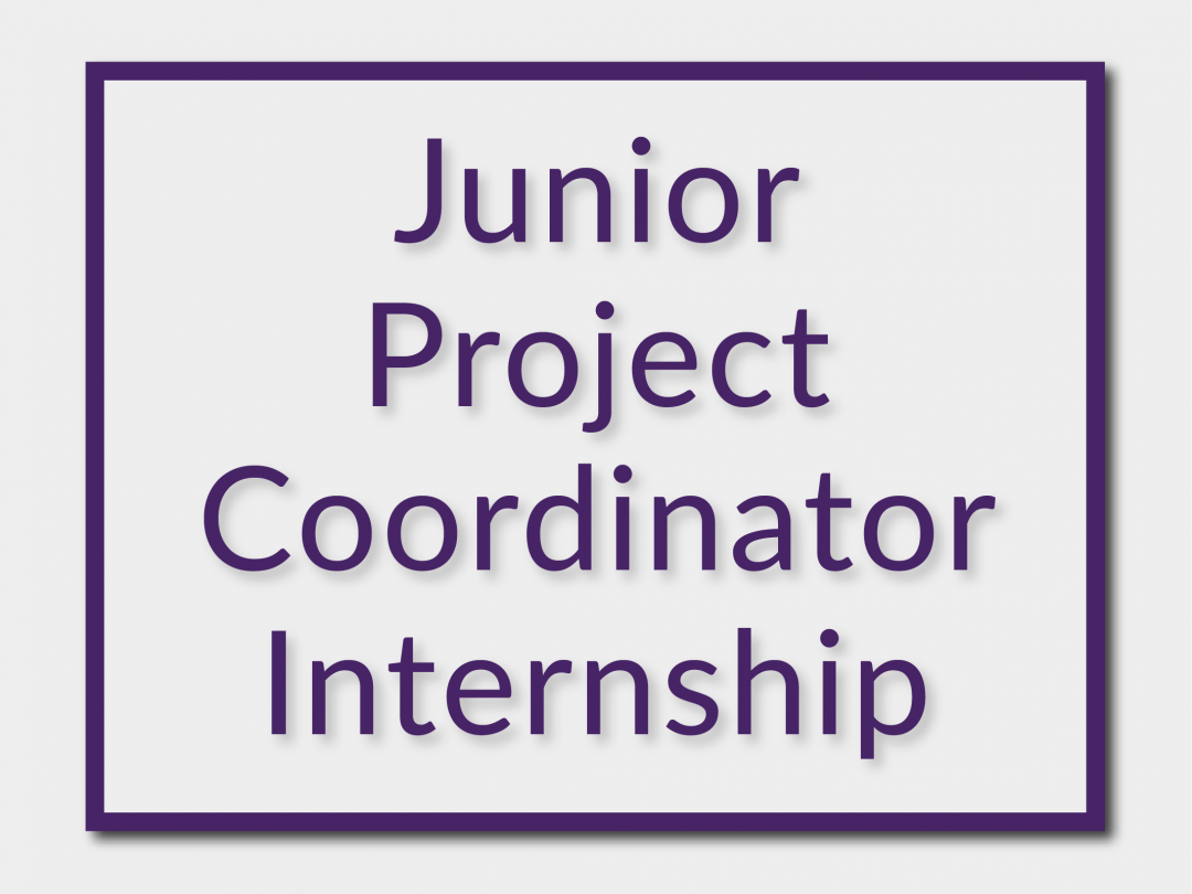 Junior Project Coordinator Internship